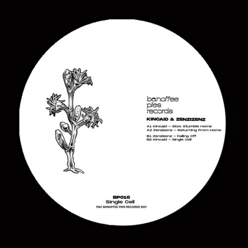 Various Artists - Single Cell - BP016 - BANOFFEE PIES