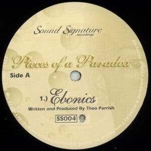 Theo Parrish - Pieces Of A Paradox - SS004 - SOUND SIGNATURE