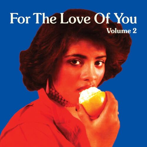 Various - For The Love Of You Vol.2 - AOTNLP047 - ATHENS OF THE NORTH