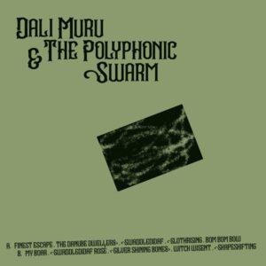 Dali Muru/The Polyphonic Swarm - Dali Muru & The Polyphonic Swarm - STRLP-053 - STROOM